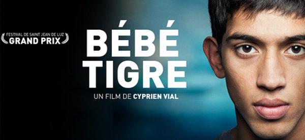 Interview du réalisateur de Bébé Tigre